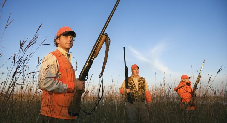 What Do You Need to Enroll in Hunter Safety Course Classes?