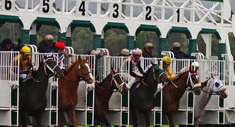 What Are Some Good Betting Strategies for Horse Races?