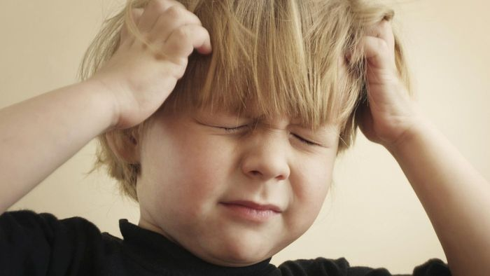 How Do You Get Rid of Head Lice in Your Home After an Infestation?