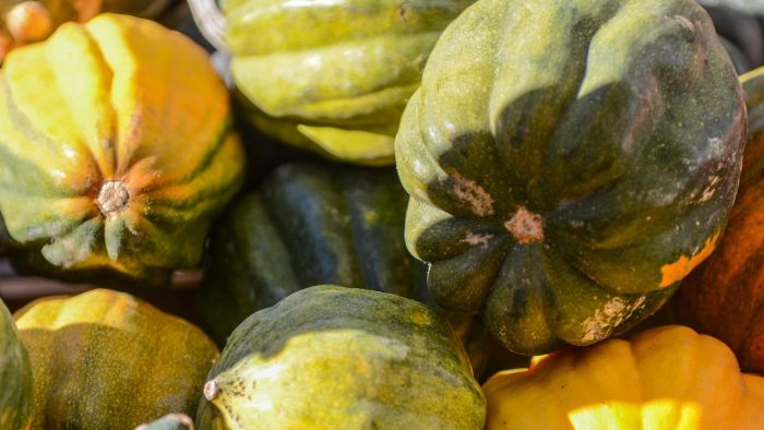 How Do You Bake Acorn Squash?