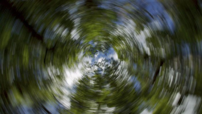 What Is the Relationship Between Ear Crystals and Dizziness?