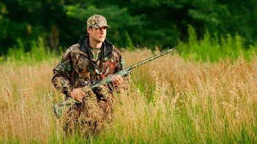 What Are the Laws on Hog Hunting in Pennsylvania?