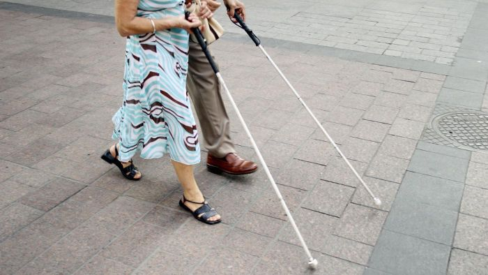 What are some of the major causes of blindness?