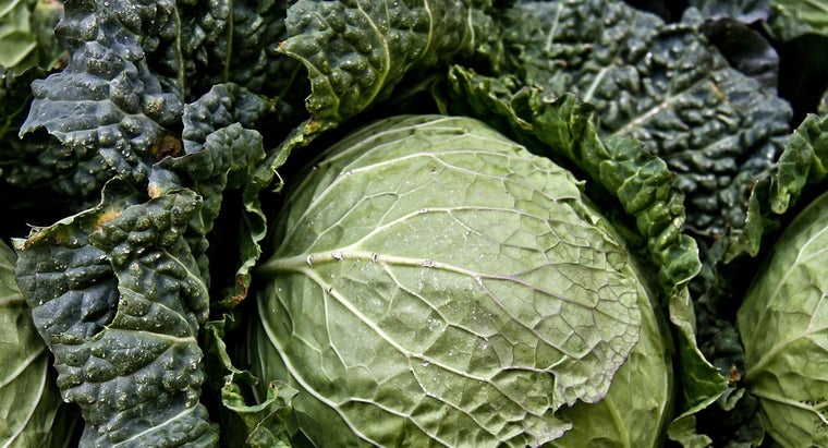 What Is the Most Popular Seven-Day Diet Cabbage Soup Recipe?