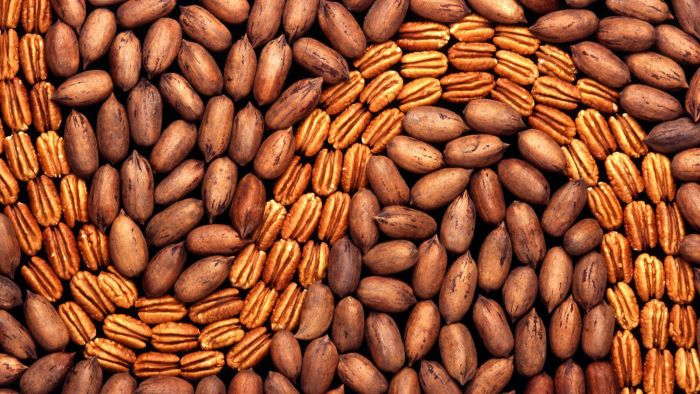 What Are Some of the Varieties of Pecans That Sunnyland Farms Sells?