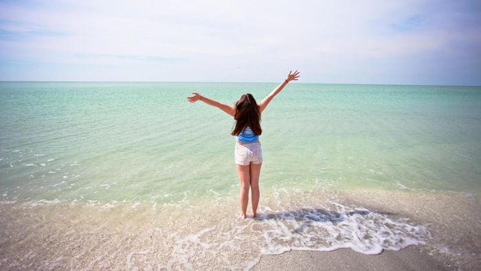 What Are the Real Estate Options on Sanibel Island?