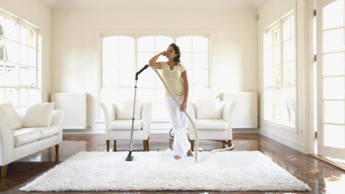 What Are Some Carpet Cleaning Methods?