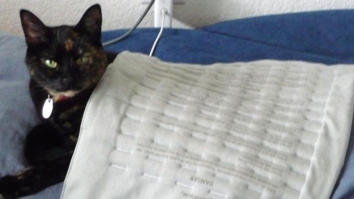 """What Electric Blankets Are """"best Rated"""" by Consumers?"""