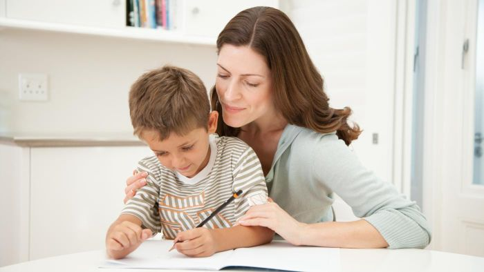 What Can You Learn From Free Online Home-Schooling Programs?