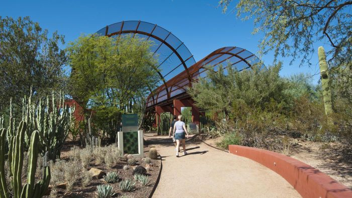 What Are Some Tips for Visiting the Desert Botanical Garden in Phoenix?