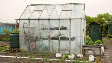 What Are Some Tips for Building a Small Greenhouse?