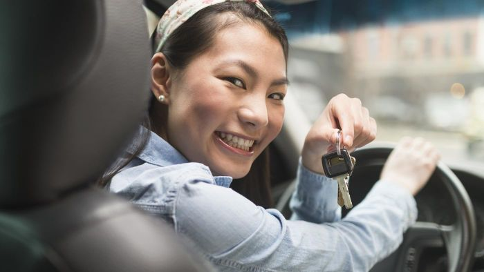 Is there a practice driver's test online?