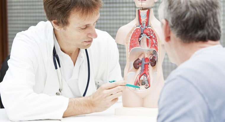 What Is the Average Life Expectancy for Someone Diagnosed With Kidney Disease?