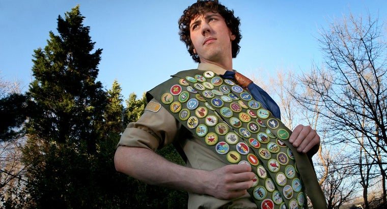 What Is a List of All Eagle Scout Rankings?