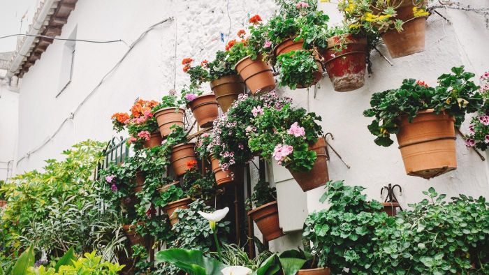 What Characteristics Should You Look for in Outdoor Garden Pottery?