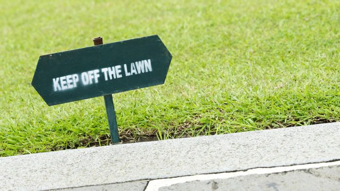 What Are Some Different Types of Lawn Signs?