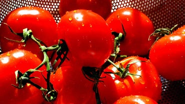 What Is the Tomato Canning Process?