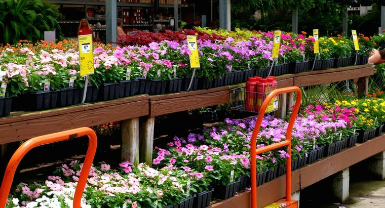 Do Home Depot Stores Carry Gardening Products?