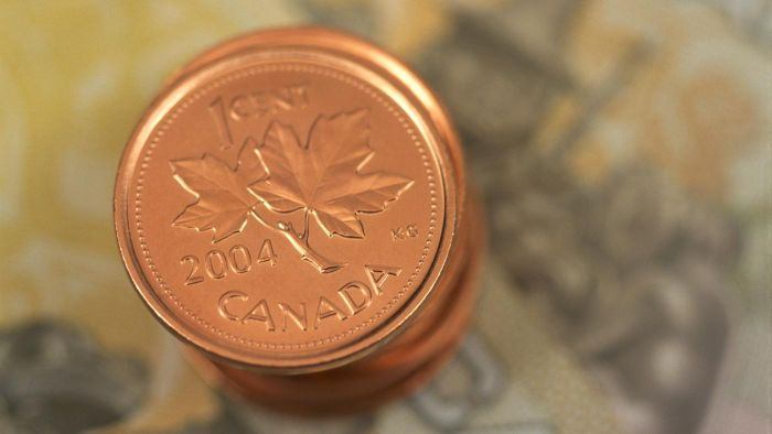 How Do You Find Canadian Coin Values Online?