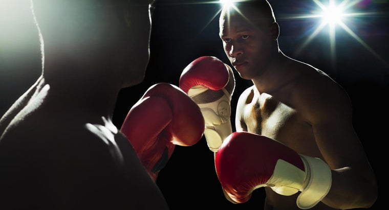 What Are Some Popular Online Boxing Games?