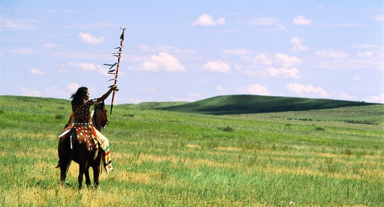 What Are Some of the Foods Eaten by the Plains Indians?