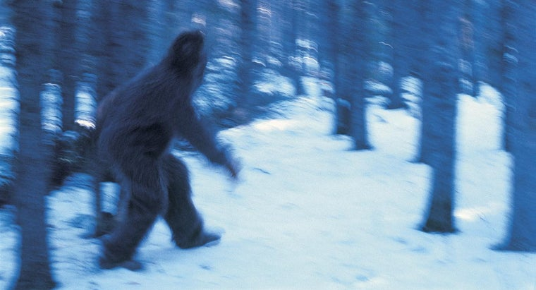 What Are Some Infamous Videos Featuring Bigfoot?