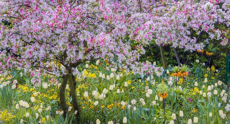 What Are Some Poems About Springtime?