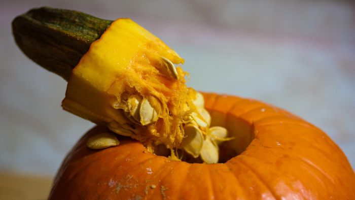What Are Some Recipes Using Fresh Pumpkin?