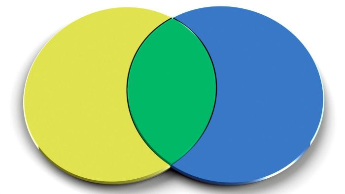 What Is a Venn Diagram?