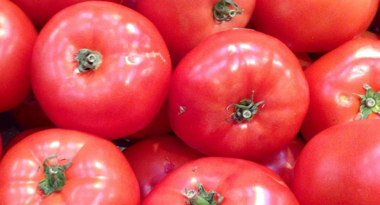 Are Tomatoes Bad for Gout?