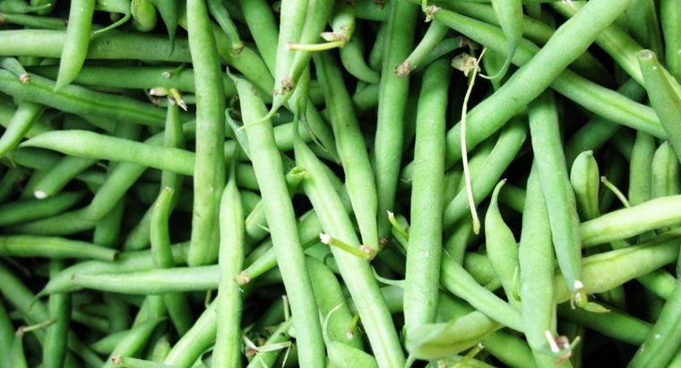 How Do You Freeze Green Beans?