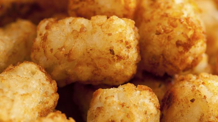 What Are Some Recipes Containing Tater Tots and Cheese?