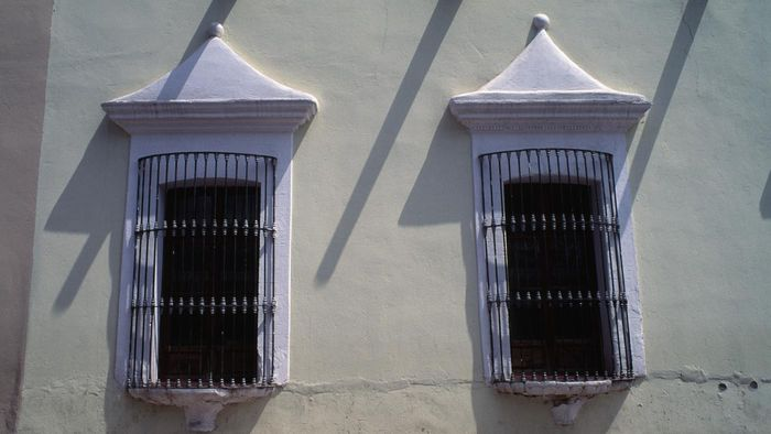 What Are Some Good Brands of Security Grills for Windows?