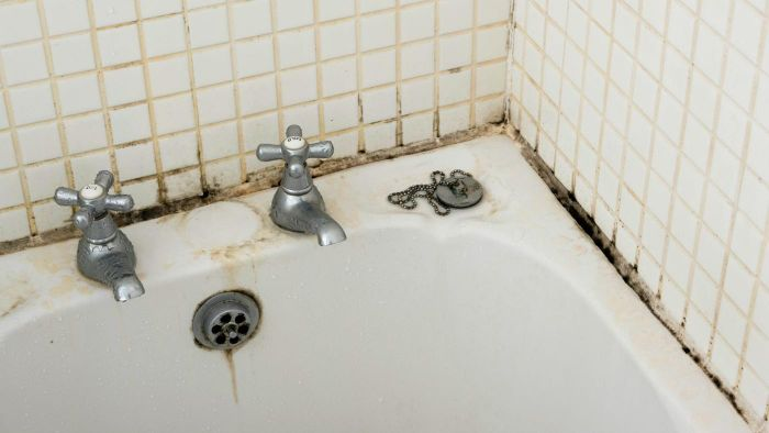 How Do You Get Rid of Mold in the Bathroom?