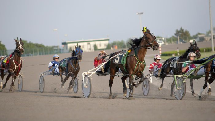 Where can you find information on entries and results for Yonkers Raceway?
