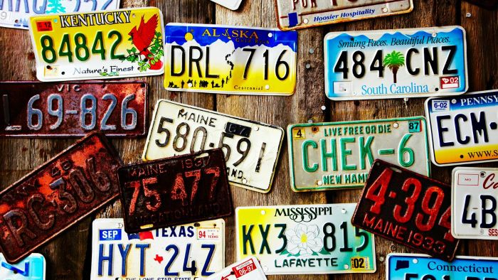 Why Would the Police Want to Look up a License Plate?