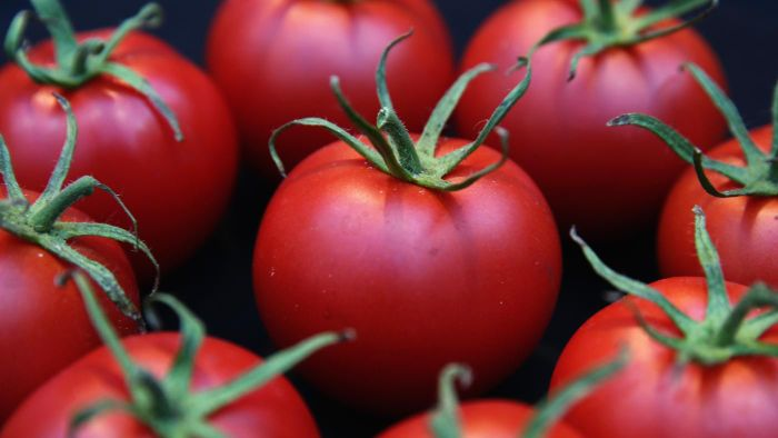 How Many Carbs Are in a Tomato?