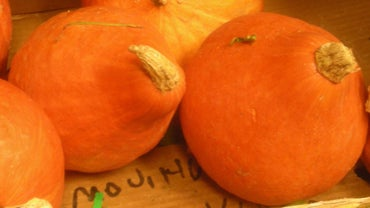 How Do You Cook Red Kuri Squash?