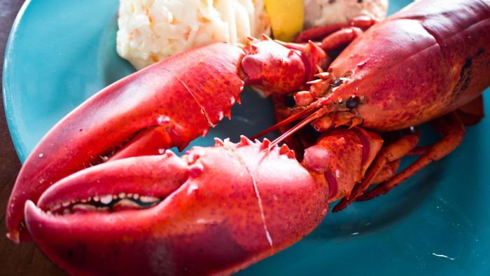 What Are Some Ways to Get Red Lobster Coupons?