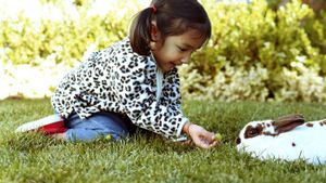 What Are Some Kid-Friendly Facts About Rabbits?