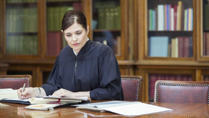 Where Can You Find a Sample Character Letter to a Court Judge?