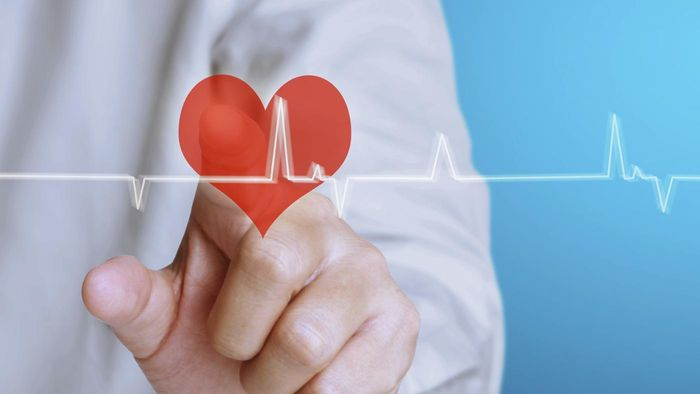 What is an echo heart test?