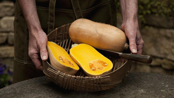 How Many Calories Are in One Serving of Butternut Squash?