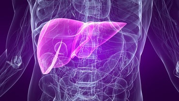 What Is the Average Life Expectancy for a Patient With Liver Cirrhosis?