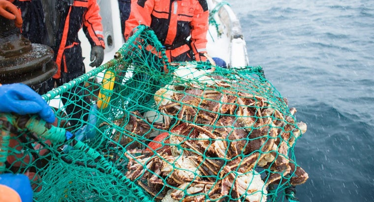 What Time of Year Is Recommended for Crab Fishing?