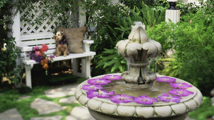 What Are Some Ideas for Backyard Water Features?