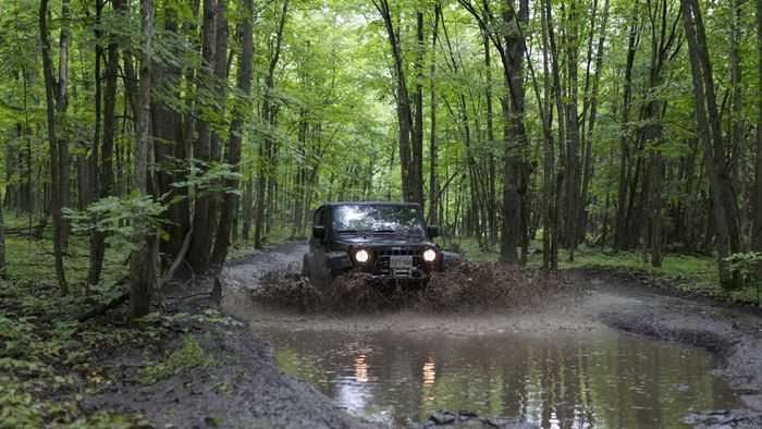 What Should You Look for When Buying a Used 4x4 Truck?