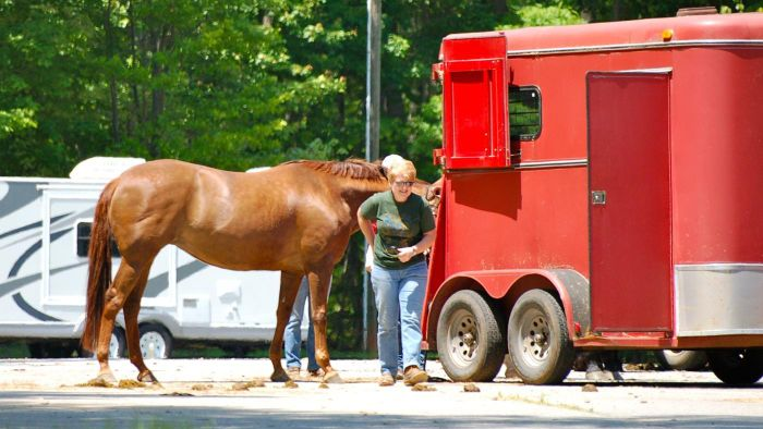 How Can You Find Repo Horse Trailers for Sale?