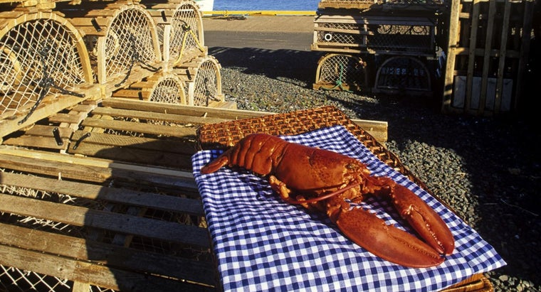 How Are Lobsters Cooked?