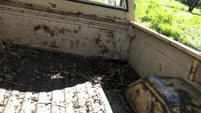 Where Can You Buy Used Truck Beds?